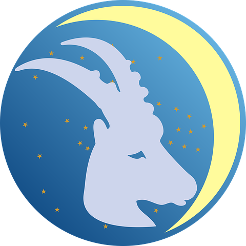 What Are The Careers For Capricorn Personality?